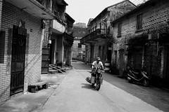 Untitled (richardhwc) Tags: asahi pentax spotmatic blackandwhite fomapan200 sanshui guangdong china smc takumar 35mmf35 m42 film