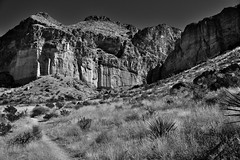 A Trail Towards Lower Burro Mesa (Black & White, BIg Bend National Park)