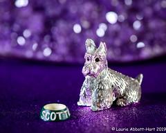 20190805 Scottie Diva 29968-Edit (Laurie2123) Tags: christofle fujixt2 laurieturnerphotography laurietakespics laurie2123 nikkor105mm nikond800e odc ourdailychallenge scottie adwoo bokeh geode macro offcameraflash purple sparkle
