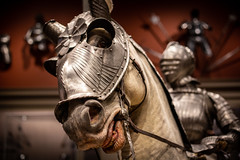 Chivalry (Phil Roeder) Tags: chicago illinois artinstituteofchicago artmuseum art mus knight horse canon6d canonef50mmf18