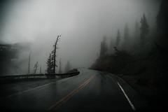 The Beckoning (miss.interpretations) Tags: mountains moody fog mist dark dim misty darkphotography moodyphotography colorado coloradophotographer coloradolandscapes roadphoto roadphotography tree wet rain reflections rachelbrokawphotography