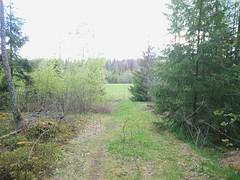 right turn to Stenbøl farm (mtbboy1993) Tags: opencamera rawtherapee ihlen askim indreøstfold østfold norway norge skog forest trail sti fjellbu stenbøl