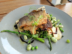 Pan Fried Sea Bass with Broad Beans, Peas, Mushroom, Asparagus and Balsamic Glaze (Tony Worrall) Tags: theanthologist seabass fish greens beans images photos photograff things uk england food foodie grub eat eaten taste tasty cook cooked iatethis foodporn foodpictures picturesoffood dish dishes menu plate plated made ingrediants nice flavour foodophile x yummy make tasted meal nutritional freshtaste foodstuff cuisine nourishment nutriments provisions ration refreshment store sustenance fare foodstuffs meals snacks bites chow cookery diet eatable fodder ilobsterit instagram forsale sell buy cost stock