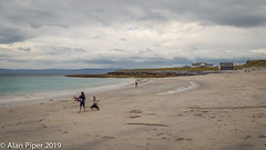 The Beach (PapaPiper) Tags: trainisoirr galwaybay countygalway ireland eire strand beach sand sky seascape sea holidays remote pleasure family summer weather clouds island ocean irish dog white