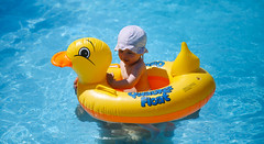 My ducklings (Inka56) Tags: crazytuesday yellow duck swimmingpool tara water float