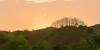 _J5K8216-20.1.0513.Chiềng Đông.Yên Châu.Sơn La (hoanglongphoto) Tags: asia asian vietnam northvietnam northwestvietnam landscape scenery vietnamlandscape sunset sky redsky tree trees hill hillside natute canon canoneos1dsmarkiii canonef70200mmf28lisiiusm tâybắc sơnla yênchâu chiềngđông phongcảnh hoànghôn bầutrời bầutrờimàuđỏ ngọnđồi sườnđồi hàngcây thiênnhiên hoànghôntâybắc northernvietnam vietnamscenery phongcảnhsơnla hoànghônsơnla flankshill 1x2 imagesize1x2