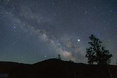 乗鞍高原24・Norikura Highland (anglo10) Tags: japan 長野県 松本市 乗鞍高原 高原 field 星景 starscape 天の川