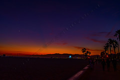 Santa Monica Beach Sunset (morgan@morgangenser.com) Tags: ocean sand santamonicabeach blue trees sunset red people orange sun black colors beautiful silhouette yellow kids clouds evening cool colorful pretty dusk windy palmtrees palmtree leafs bluff pacificpalisades photobymorgangenser