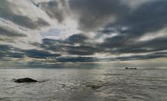Westerschelde (Omroep Zeeland) Tags: westerschelde kruiningen golven golfslag wolken wolkenlucht scheepvaart fiets voetveer hansweert