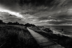 Evening Coast Walk North (Peter Polder) Tags: coogee australia beach bay clouds dusk evening sky landscape monochrome mono ocean overcast rocks sydney seascape sea surf waves water y