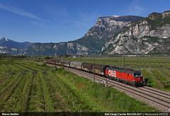 OBB Rh1293.017 (Marco Stellini) Tags: rail cargo carrier obb austria 1293 193 vectron siemen brennero brennerbahn italia adige mezzocorona trento