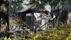 Hunter's retreat (Alexa Maravilla/Spunknbrains) Tags: drd uber secondlife sl 3dmesh digitalphotography virtual virtualworld outdoors cabin hunter wood trees nature sweet revolutions fundati alirium 3dtrees
