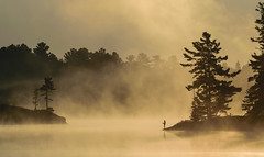 Sunrise on Grundy Lake - 3364 (RG Rutkay) Tags: grundytrip nature nearnorth outdoors silhouette landscape fog clouds sunrise lake wilderness ontario trees hemlocks mist camping morning early summer scene water fishing