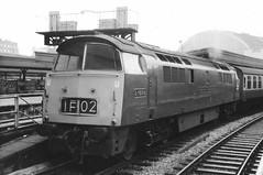 Western Enterprise (Peter Leigh50) Tags: wr western class 52 diesel hydraulic paddington station signal platform mono monochrome blackandwhite 1968 railway railroad rail train track