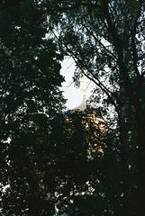 Eterna 250d_34 (Piotr Pilat) Tags: minsk vitryssland film fujifilm eterna250d eterna canon canoneos3 eos3 35mm пленка беларусь минск минскаяобласть мінскаявобласць молодечно frontira