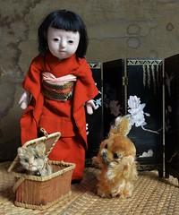 Emiko and friends (shero6820) Tags: old vintage antique toys dolls ichimatsu ningyo steiff dog cat japan gofun pekinese