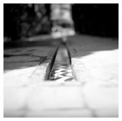 Alcazár (irgendwiejuna) Tags: water spain sevilla seville alcazár hasselblad hasselblad500cm ilfordfilm ilford fp4 mediumformat 120 6x6 blackandwhite tiles garden architecture 2019