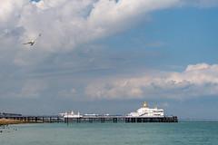 02082019-DSC_8232REG`PIC.jpg (Sigertracip) Tags: eastbourne jetée pier sussexdelest angleterre royaumeuni