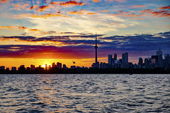 (A Great Capture) Tags: agreatcapture agc wwwagreatcapturecom adjm ash2276 ashleylduffus ald mobilejay jamesmitchell toronto on ontario canada canadian photographer northamerica torontoexplore summer summertime été sommer 2019 skyline cntower sunset lakeontario water city lake cityscape canon eos 6d mark ii ef2470mm colours colors colourful colorful atardecer urbanscape digital dslr lens sky himmel ciel outdoor outdoors outside vibrant cheerful vivid bright clouds cloudy