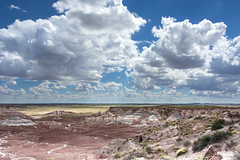 20150914--7FP_2489 (Frank's Focus) Tags: 2015 arizona months petrifiedforest september travel