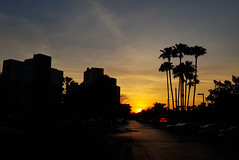Amanhecer na Flórida (Tiago Melo - Portfólio Fotográfico) Tags: florida amanhecer galaxys8 nascerdosol