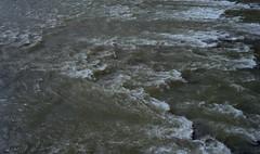 Adige (Paolo Levi) Tags: river fiume adige verona italy minotar minox kodacolor 35mm water