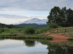 Early Morning at Manitou Lake (Patricia Henschen) Tags: wetland colorado pikespeak tellercounty pikenationalforest manitoulake woodlandpark lake pines trees picnic nationalforest reflection morning light bridge boardwalk fence path pathscaminhos
