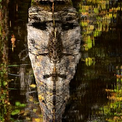Face Island (The Good Brat) Tags: colorado us steamboatsprings face reflection water pond garden botanic park autumn