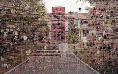Espinoso edificio (Doble exposición) (Marcos Núñez Núñez) Tags: