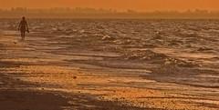 sand in your toes... Florida (al-ien) Tags: beachlife beachscene beach florida floridaseascape walking