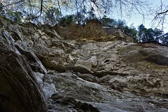 Going Up! [In Explore] (phthaloblu) Tags: ravenrockstatepark nc northcarolina usa rocks trees ledges