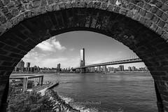 D85_7794 (captured by bond) Tags: dumbo newyork water brooklyn bridge manhattanbridge