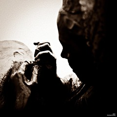 Une couturière aux doigts d'or (Un jour en France) Tags: canonef1635mmf28liiusm canoneos6dmarkii sepia couturière carré square art statue