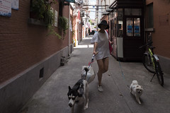 Nameless (Spontaneousnap) Tags: spontaneousnap street shanghai china city like candid documentary people publicareas lifestyle 上海 leicaq takeabreak afternoon asia summer pet walkingthedag girl alley littledoglaughedstories