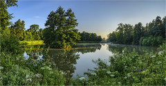 Fischteich (Robbi Metz) Tags: germany bavaria stauden augsburgwestlichewälder landscape pond fishpond water forest trees morning sonyilce7m3