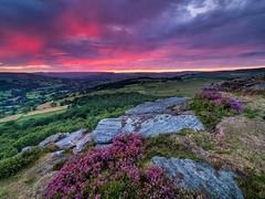 Purple rain (Stephen Elliott Photography) Tags: peakdistrict hopevalley derbyshire hathersage millstone edge afterglow sunset summer heather olympus em1 714mm kase filters