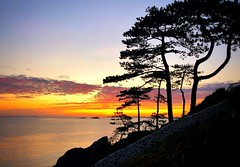 St Lu Zen (G.Billon) Tags: iphone cameraphone iphoneography sunset breizhmabro côted'émeraude coast bretagne breizh bzh îleetvilaine 35 saintlunaire gbillon