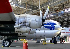 "Boeing C-97G Stratofreighter 52 • <a style=""font-size:0.8em;"" href=""http://www.flickr.com/photos/81723459@N04/48478378961/"" target=""_blank"">View on Flickr</a>"