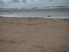 JS069685 (crosathorian) Tags: nordsee urlaub strand wasser meer dänemark römö röm