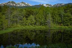 牛留池2・Ushidome Pond (anglo10) Tags: japan 長野県 松本市 乗鞍岳 山 mountain