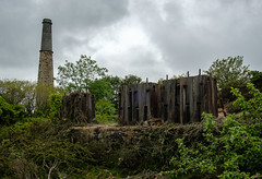 Stack and Stamps, Wheal Busy (Rogpow) Tags: mine cornwall whealbusy chacewater chimney abandoned overgrown tin fuji timber stamps decay ruin stack fujifilm disused derelict dilapidated arsenic tinmine industrialarchaeology industrialhistory cornishmines cornishmining cornishminingworldheritagesite fujixpro2 californianstamps