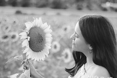 Te mira. (@merchelas) Tags: girasoles bn bnw monocromo retrato portrait flowers girasol