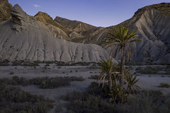 evening in the badlands (Rafael Zenon Wagner) Tags: dji drone 28mm spain spanien andalusia andalusien