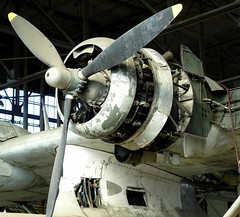 "Consolidated PBY Catalina Flying Boat 5 • <a style=""font-size:0.8em;"" href=""http://www.flickr.com/photos/81723459@N04/48480261542/"" target=""_blank"">View on Flickr</a>"