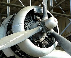 """Consolidated PBY Catalina Flying Boat 4 • <a style=""""font-size:0.8em;"""" href=""""http://www.flickr.com/photos/81723459@N04/48480262117/"""" target=""""_blank"""">View on Flickr</a>"""