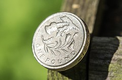 2014 - Scottish Thistle (JH Stokes) Tags: 2014 scottish scotland thistle onepound roundpound £1 coin coins numismatics numismatism money currency british photography