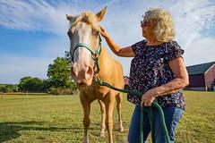 ohio-butler-county-oxford-sycamore-farms-country-inn-cheryl-lwb-7012 (FarFlungTravels) Tags: animals bedbreakfast bb bandb bedandbreakfast butlercounty countryinn farm horse oxford sycamorefarms