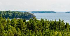 The Gulf of Finland 🌴 (Esa Suomaa) Tags: suomi saaristo suomenlahti thegulfoffinland finland scandinavia sea trees forest hamina olympusomd
