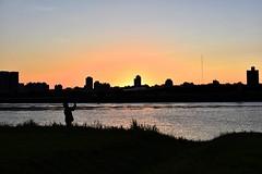 夕陽 (dogcat131) Tags: 公園 新北 台北 河濱 台灣 夕陽 黃昏 太陽 樹 剪影 腳踏車