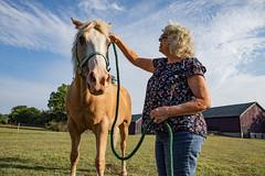 ohio-butler-county-oxford-sycamore-farms-country-inn-cheryl-lwb-7017 (FarFlungTravels) Tags: animals bedbreakfast bb bandb bedandbreakfast butlercounty countryinn farm horse oxford sycamorefarms